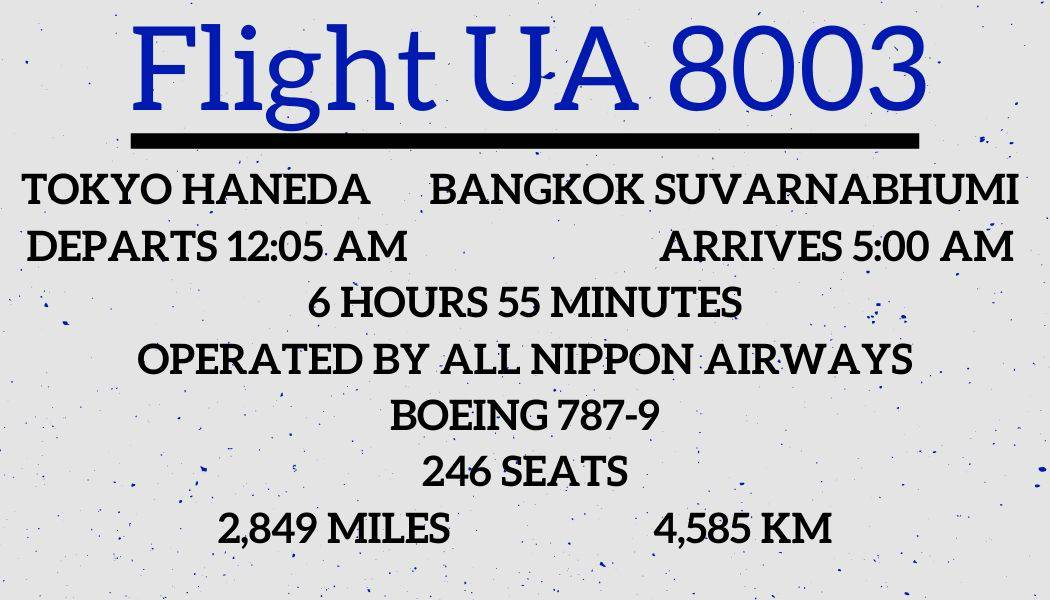 Flight Review UA8003 NH 849 by Passenger